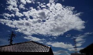 シニア世代の楽しみ 9月22日  GOOD  AFTERNOON🎵  秋晴れの上天気 気分もスカッとします👍 皆さん 如