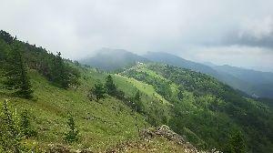 ▲武甲山ファンふたたび▲ 【2018.07.14 大菩薩嶺 上日川峠周回 山行報告】  初めて、行ってきました。 天気が悪く展