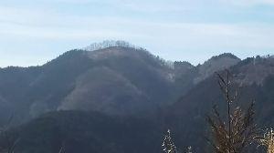 ▲武甲山ファンふたたび▲ 【3/3(土) 奥多摩高水裏三山 山行報告】  一年振りに裏を歩いてきました。  ヤマレコはここから