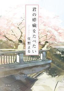 週末のメインレース予想 【足羽川・幸橋】  電車も通る橋 なんかイメージが違うんです  君の膵臓をたべたい 泣かせていただき