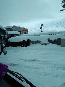 楽しいね〜 おはようございます。  岩船地方!大雪警報中❗ 朝日村、道の駅!大入り満車🈵  近くのデイリーで大型
