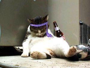 8698 - マネックスグループ(株) もう、どうとでもなれや! 酒でも飲もう。