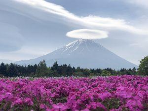 スクーターに、お乗りの方、色々お話しましょう、 こんばんは♪ お久しぶりです💗 この前富士山ツーリングに参加して、富士芝桜まつりの所でこんな傘雲見ま