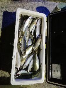 若狭湾西部の海釣り 皆さん こんにちは。  ウイングさん 先日は、大変ご迷惑おかけして申し訳ありませんでした。  昨日の
