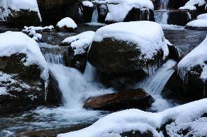 趣味お持ちの方  今晩は。  今年の冬は早いですね。 今日は雪を求めて3時間程ドライブに。 峠が雪で通れず途中で撤退し