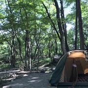 ファミリーキャンプご一緒しませんか?