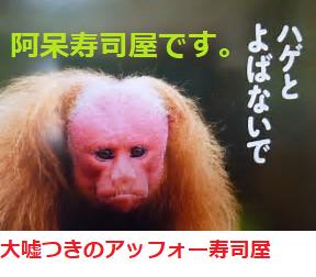 4565 - そーせいグループ(株) 成り済まし投稿、人間のクズ・アッフォー寿司屋よ、  そう言えば、カツラを買いたいと、投稿してたな。