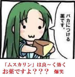 4565 - そーせいグループ(株) アホ寿司くん、  馬鹿に付けるくすりだよ、  表示名:成りすまし=夢ドラ(本HN:バカ寿司) ユーザ
