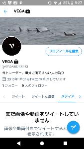 VEGAの妄想証券 Twitter移動完了しました。  この画面の画像のシャチ7頭は、私が羅臼で撮影したものです。 です