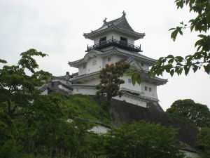 北海道一周 見る位置によって 城の印象は変わります。  ここに 一豊・千代が 秀吉から 所領をいただき 一城の主
