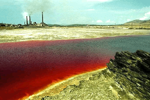 9501 - 東京電力ホールディングス(株) チェルノブイリの石棺は放射能で破壊され近くには死の放射能池とか
