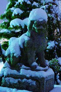 写真撮影趣味 雪を被った狛犬