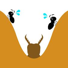 6857 - (株)アドバンテスト > 蟻さんマークの引越し社で蟻地獄のバイト?。 > ウス婆カゲロウの幼虫が地獄の底で