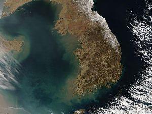 3402 - 東レ(株) 「り地域Bグループ」の寄生虫だらけのヒラメや人糞まみれの海苔は残留放射能の危険があるから輸入禁止にす