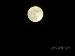 いつでも夢をパート2 最後の書き込みにて 終わらせていただきますm(__)m  のこさん情報で・・・ お月様の声が 私を撮