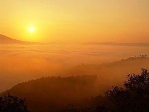 片思いのつぶやき おはよう(^-^)  今日は、雲が多いけど晴れです。 朝まで雨が降ってたよ(^^)/  一応、今年や