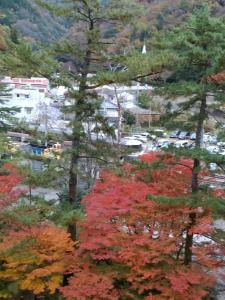 9010 - 富士急行(株) 下部温泉に来たのでネクラ風林火山ちゃんに紅葉とワイドビューふじかわの写真を特別にプレゼント🐛💩