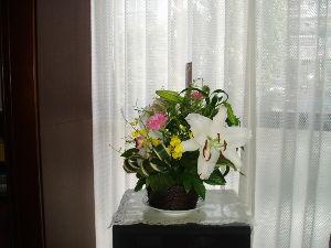 7213 - レシップホールディングス(株) 今日柿(2L)が届きました。 神奈川県です。