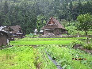 諸国放浪記 富山県五箇山です。 この集落に行ったときに、 7月の小雨模様でした。 雨の見物も、風情がありました。