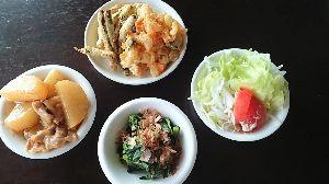 今日の晩御飯 夕べの肴。  野菜の天婦羅。 茄子・いんげん・玉ねぎなど。  豚ばら大根。 お浸しと生野菜。