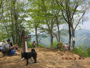 甲斐犬と共に 犬の背後中央に東京都最高峰の雲取山が見えるのですが