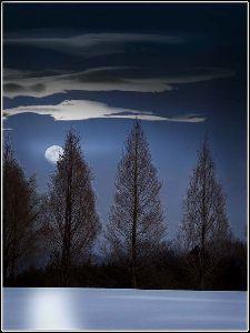 写遊人 < 大空に月ぶら下がり雲凍てぬ >  池上浩山人 作 このところ毎日零度以下、昨年よりかなり冷えてい