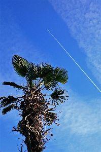 写遊人 秋晴れ、雲間を一直線に進む飛行機。