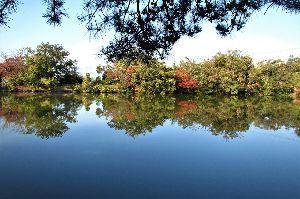 写遊人 水面に映える紅葉、ネオポリス三段池にて。