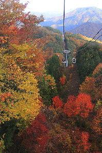 写遊人 紅葉の富士見台高原。