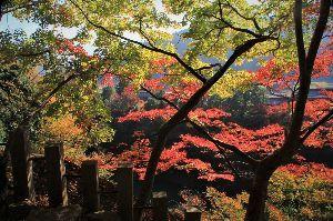 写遊人 永源寺の秋その1