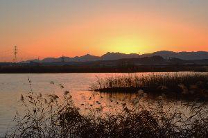 写遊人 夕焼けに染まる揖斐川