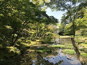 お気楽に生きる。 前略  先週は、火曜日から週末まで奈良・京都の春の旅であったが、今週は学校関係の役員選考会や総会など
