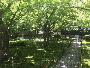 お気楽に生きる。 前略  昨日は、昨年夏以来の京都であったが、午前中は嵯峨野散策、午後は大徳寺、貴船神社などを訪れてみ