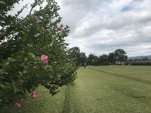 お気楽に生きる。 前略  雨で中止かと思っていまマネットゴルフ大会であったが、午前5時頃にはその雨も止み、無事開催の運