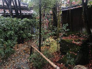 お気楽に生きる。 前略  今週は、7日9日と定期検診であるが、特に予定もなく割と暇な週である。  軽井沢の紅葉も見どこ