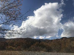 お気楽に生きる。 前略  晩秋を感じる中、暖かな一日であった。  軽井沢でも、正午の気温が軽井沢銀座辺りで18度である