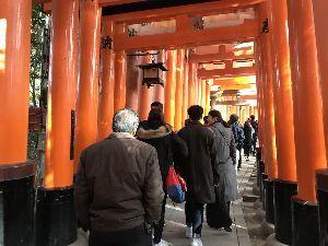 お気楽に生きる。 前略  今年の正月行事も、京都神社仏閣初詣をもって無事終了となった。  幸いにも、お天気に恵まれ、誠