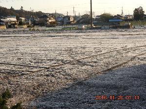 心の窓を開けて トラさんおはようございます 霜月 今朝は畑は真っ白に成りました 寒い訳ですね でも ゲートボール場で