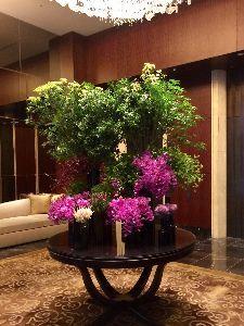 3478 - 森トラスト・ホテルリート投資法人 ありがとう。今日分配金頂きました。シャングリラホテル入り口。今月も綺麗に飾られてます。