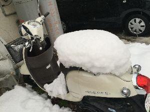 (*^▽^)/★*☆♪独り言(゜∇^d)!! 凄い 雪でしたね~ 私の 愛車が・・・(´・ω・`)