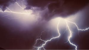 3541 - (株)農業総合研究所 嵐発生  苗根こそぎ持って行かれそう