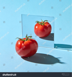3782 - (株)ディー・ディー・エス >貴殿は、yum氏をカス扱いする前に、自宅の洗面台の鏡に映っている一切責任を持たないカスを見詰