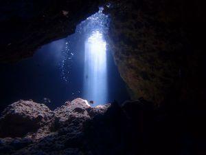 ポエムで心に癒しと潤いを・・・  碧いあおい海の底で 僕はもがいていた 一度深みに陥ってしまったら もう二度とそこから 這い出せなく