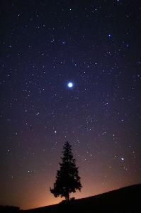 季節の風を感じながら~ こんばんは  冬の澄んだ空気  星が綺麗に見える夜  その星を見ながら  どんなお話思い浮かべていま