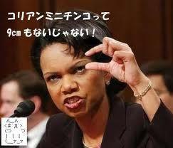 日本軍になる自衛隊! 「日本はドイツに学べ!」・・?というなら、韓国こそオーストリアに学ぶべき!   台湾と朝鮮は、194