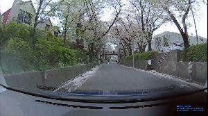ドライブレコーダー ひやり体験 (静止画版) ひやりではなく、息抜きクール体験。  福山雅治のヒット曲のモデルになった、ここが「桜坂」 桜が散って