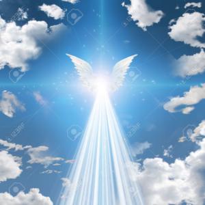 8887 - リベレステ(株) 💥高配当銘柄💥  爆発💥💥💥爆上げ 上昇気流📈‼️近い↗️↗️↗️