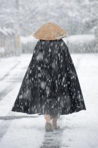 関西で撮影しましょう 2015年2月1日 朝 寝起きにトイレの窓から積雪が見えたので カメラ片手に表に出て撮った中の一枚。