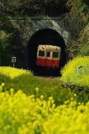 9726 - KNT-CTホールディングス(株) 強いね。  ダメ株転じて福となすか。  トンネルを抜けると・・・・