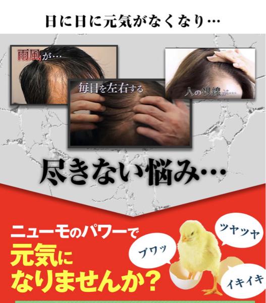 2929 - (株)ファーマフーズ 私の理屈では誤認させるような販売サイトであたかも毛がモッサモッサ生えるように思わせて600万本も大量